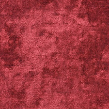Dapple Velvet Ruby SKU FD695-V88